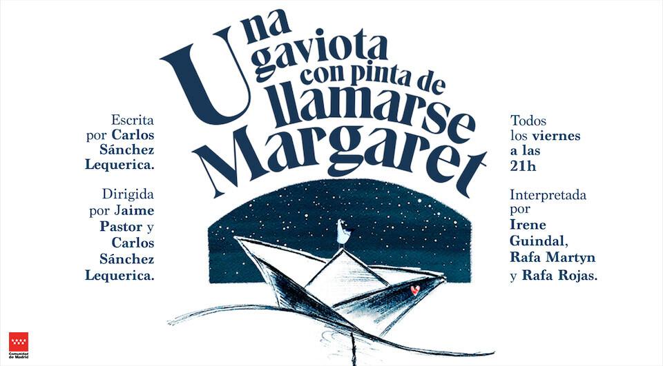 Una gaviota con pinta de llamarse Margaret